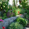 Thumbnail image for Creating a Cottage Garden