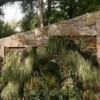 Thumbnail image for Vertical Gardens Talk at 2013 Northwest Flower & Garden Show