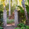 Thumbnail image for A Garden Tour with Billy Goodnick