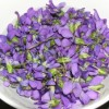 Thumbnail image for Edible Flowers Talk at So Cal Spring Garden Show