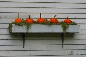 Post image for Halloween Superstitions