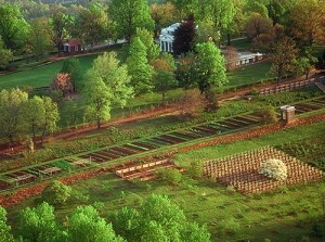 Aerial of Monticello Mountain from South, with main house, vegetable garden and south orchard. Copyright © Thomas Jefferson Foundation.