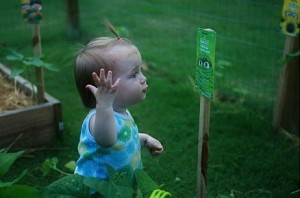 Kids should garden because it teaches them more about nature, as this little girl shows.