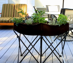grow food in small spaces with an Easy Gardener planter