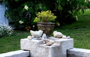 Post image for Product Review: Laguna Deck Pond + Fountain Tips