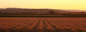 Sunset over Double XL Ranch . Photo copyright Kevin O'Connor.