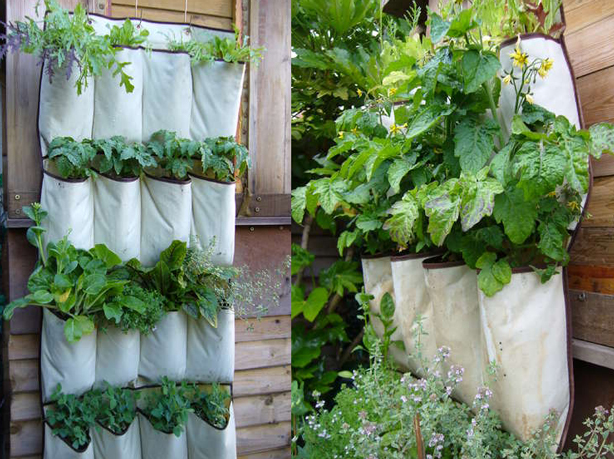 Hanging Wall Garden Diy : Living walls for small spaces urban gardens guest post