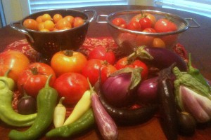 Post image for Grow: Different Tomato and Eggplant Varieties