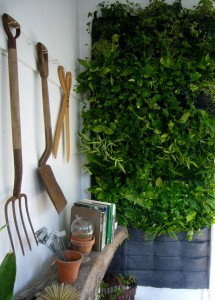 Living Walls for Small Spaces Urban Gardens Guest Post