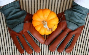 Post image for Win Fields & Lane Leather Gloves