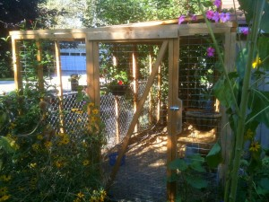 screened porch for chickens