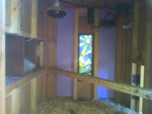 artistic chicken coops