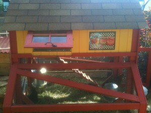 orange, yellow and red paint on chicken coop