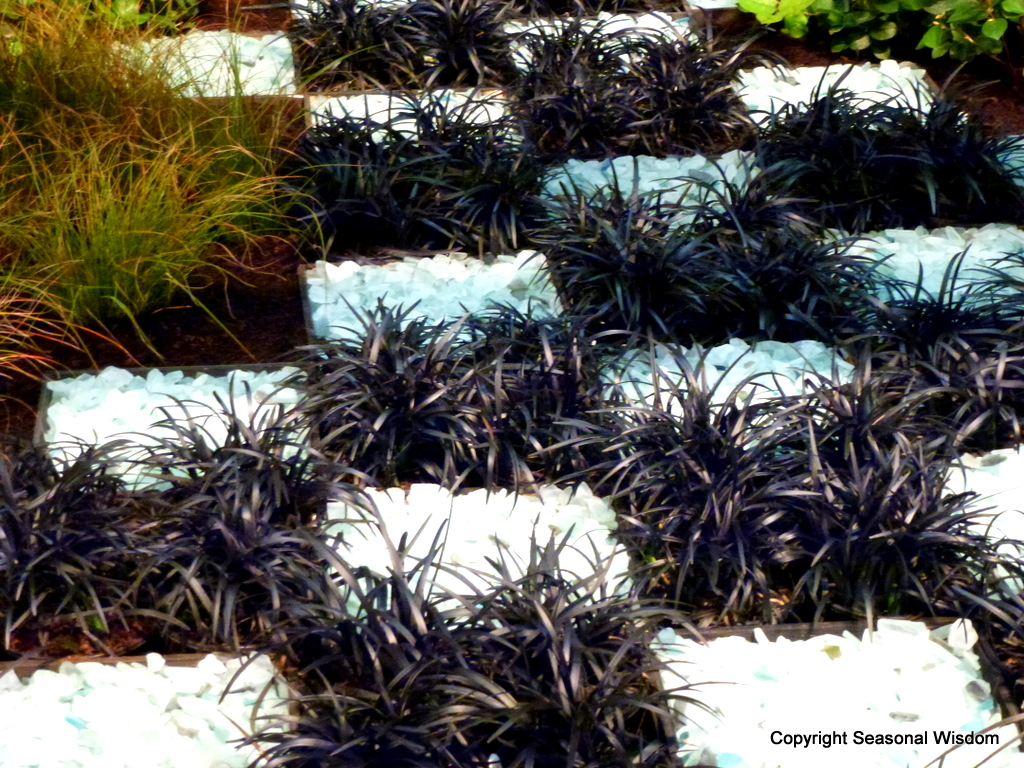 Garden trends from 2012 northwest flower garden show for Designing gardens with grasses