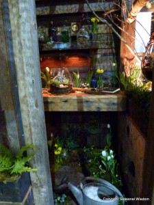 award winning garden shed