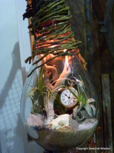 cool things to put in terrariums