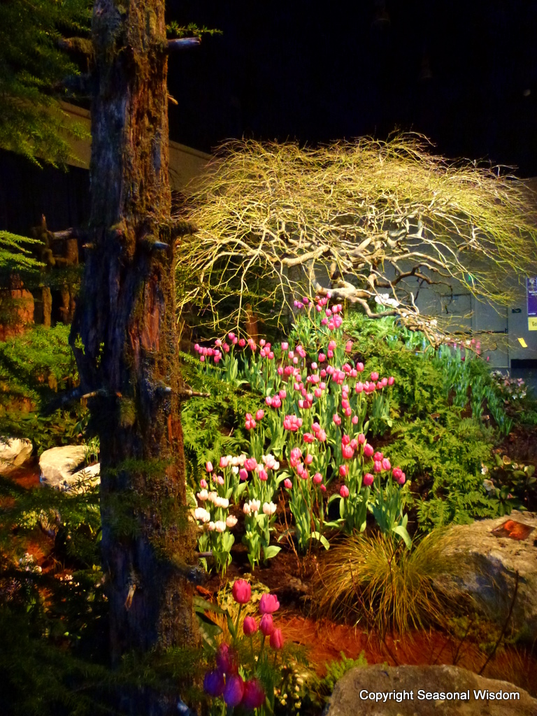 Garden Trends from 2012 Northwest Flower & Garden Show - Seasonal ...
