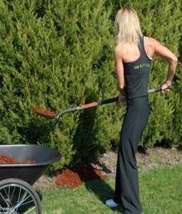 Back pain from gardening