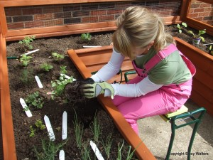 Post image for Five Fit to Garden Tips for Spring