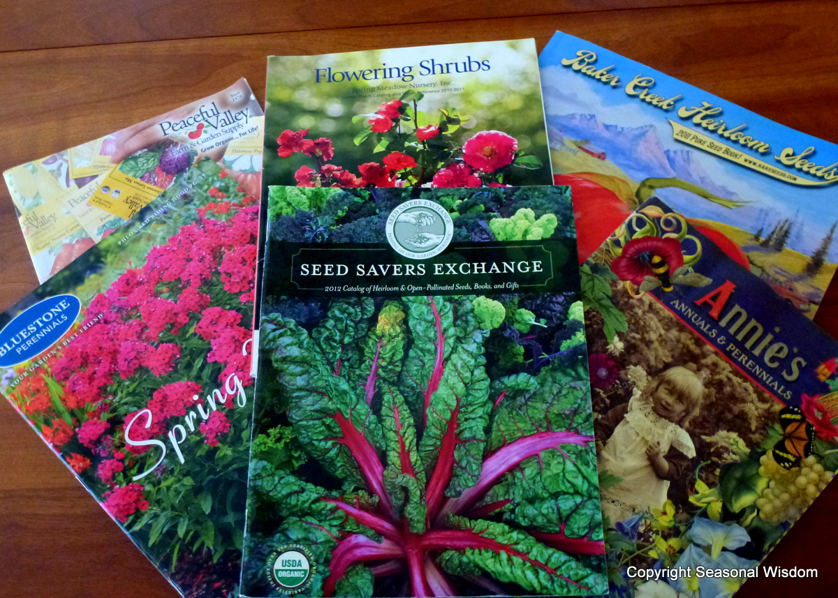 content garden seed catalogs and plant mail order sources