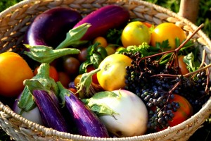 Post image for Experts Pick Three Great Vegetables To Grow