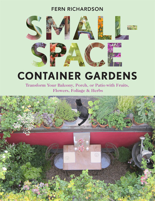 A small space garden giveaway - Small space container gardens design ...