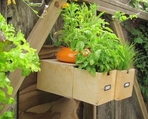 clever container ideas