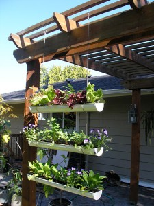 vertical gardening solution