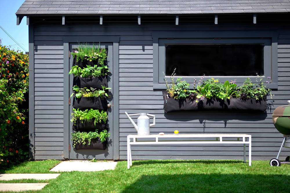 how to make a vertical garden in a rental