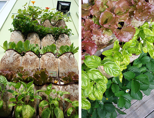 Vertical gardening and bing s summer of doing for Cheap vertical garden