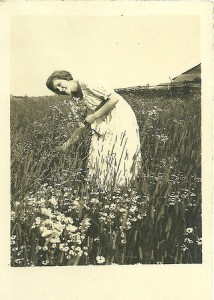 vintage photo early-20th century, woman picks flowers in meadow for summer solstice