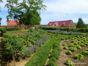 lower garden at mount vernon