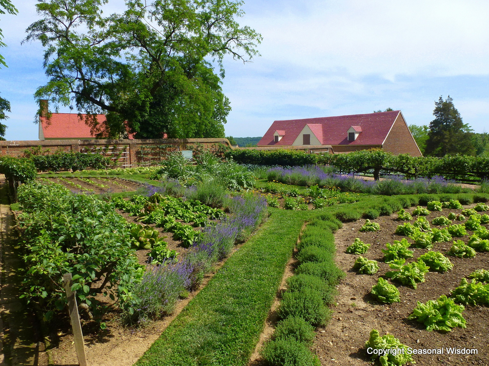 English Kitchen Garden A Garden Tour Of Mount Vernon