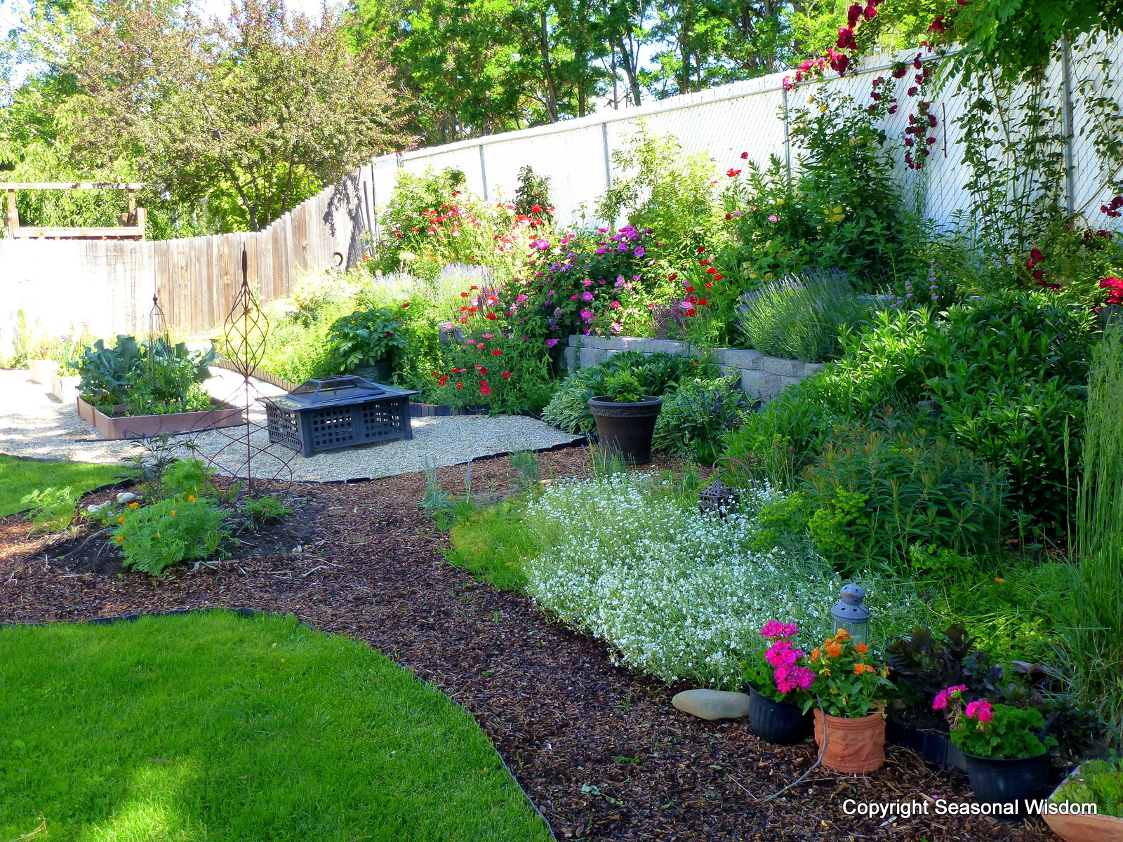 Creating a cottage garden for Backyard garden