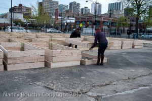 building a community garden with raised beds