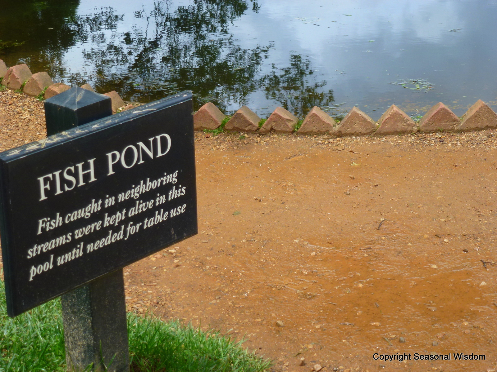Interview with peter hatch about monticello s historic gardens for Fish table sweepstakes near me
