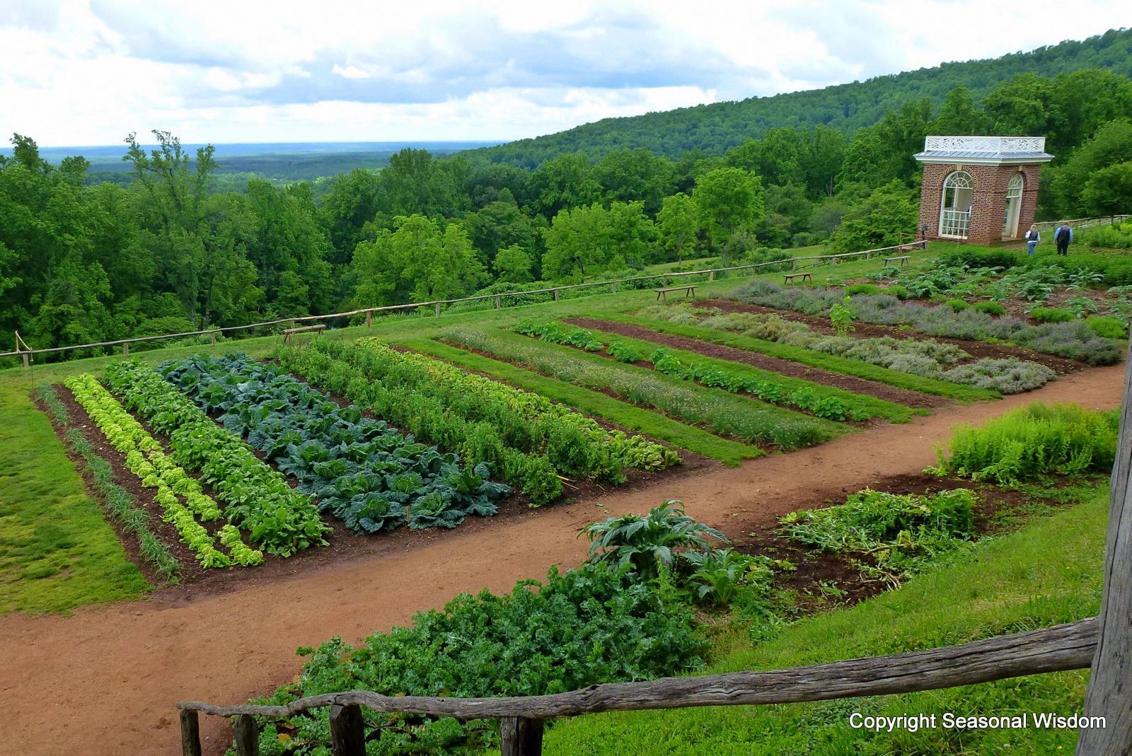 Lovely Historic Vegetable Garden. U201c