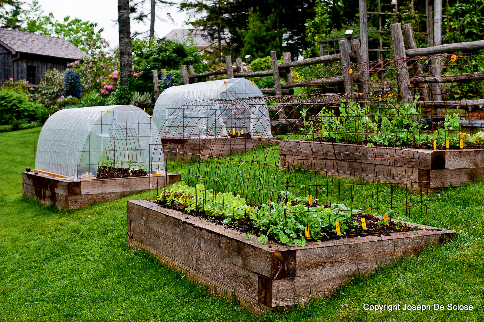 1000 images about vegetable gardens on pinterest raised for Raised vegetable garden