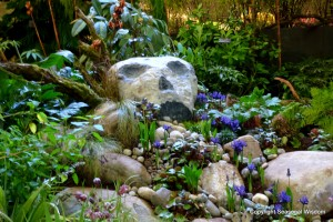 rock-garden with rare plants and a wild look inspired by the movie, Raiders of the Lost Ark