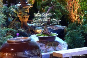 Plants, pots, sculptures on a big rock in the asian garden at 2013 northwest flower and garden show