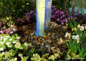 narcissus, helleborus near bottom of water columns