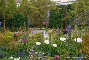 Naturalistic garden at 2013 Chelsea Flower Show