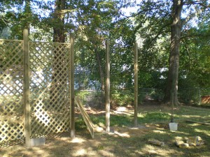 Installing several lattice trellis to the garden