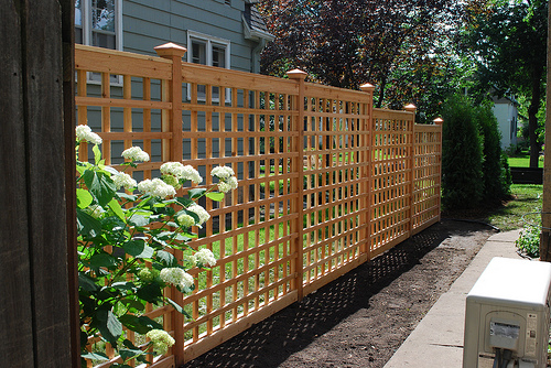 Creating a lattice trellis garden at your home for Lattice screen fence