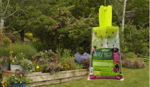 RESCUE Japanese and oriental beetle trap is a prize in mid-summer garden giveaway