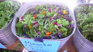 Edible flowers come pre-mixed in salads too.
