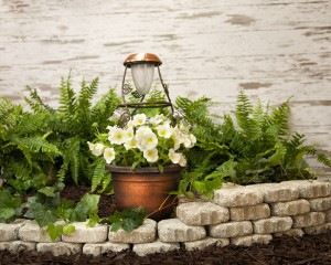Mid-summer garden giveaway includes a SolaRadiance planter.