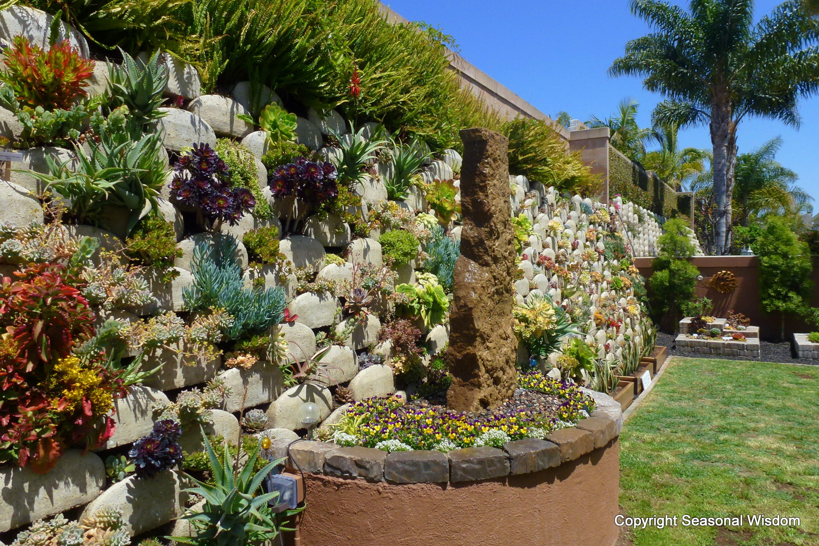 More Than 150 Succulents Grow On This Vertical Succulent Garden