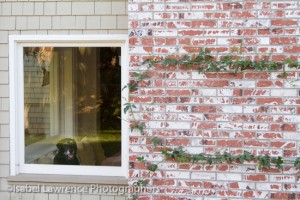 A dog waits in the window as Billy Goodnick gives us a garden tour.