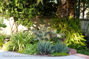 Lots of gorgeous foliage in this garden bed designed by Billy Goodnick.